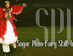 The Sugar Plum Fairy Stilt Walker